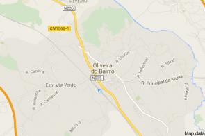 Oliveira do Bairro