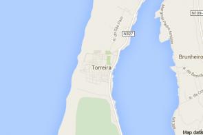 Torreira
