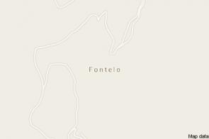 Fontelo